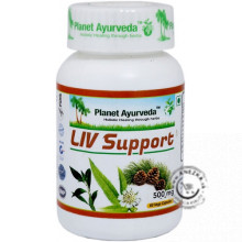 Liv Support - 60 kapsúl, Planet Ayurveda
