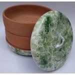 Miska na klíčenie - zeleno-zelená
