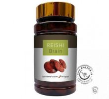 REISHI BRAIN (60x300 mg)