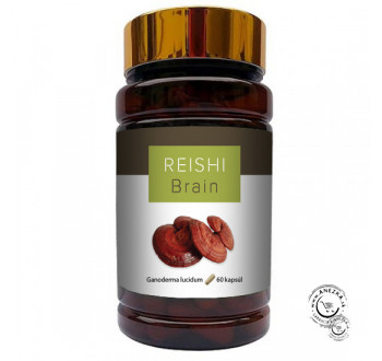 REISHI BRAIN (60x300 mg)